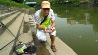 野河有鱼钓的欢(1): 花地河野钓渔获随钓随放