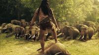 """泰国男孩被大象包围,一掌征服象王,所有大象都向他""""俯首称臣"""""""