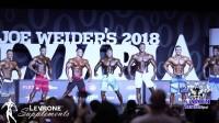 高清版2018奥林匹亚男子健体第一轮叫出