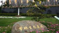 深圳出台生态安葬奖励办法 下月正式推行
