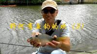 野河有鱼钓的欢(3): 台风山竹过后捅了个鲤鱼窝
