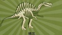 考古学家沙漠挖掘 侏罗纪公园历险记 食肉恐龙棘龙 恐龙骨骼化石发掘 恐龙认知 陌上千雨解说