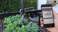 国外发明自动种菜机, 想种什么就在手机上点什么, 省时又省力!
