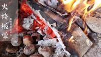 火烧板栗 柴火煮饭 自然生活体验视频 中秋户外活动