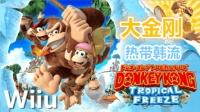 Wiiu《大金刚: 热带寒流》任天堂高难度受苦游戏直播实况01