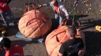 200斤超大南瓜从20米高空砸下有多大威力? 看汽车的下场就知道!
