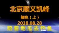 陪着地瓜去钓鱼-北京顺义凯峰鲤鱼(上)20180828