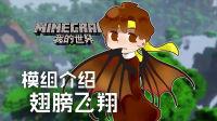 ★我的世界★Minecraft《籽岷的模组介绍 翅膀飞翔》