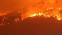 意大利托斯卡纳区发生森林大火