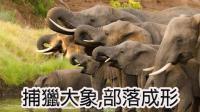 开弓猎大象! 部落民开垦初成! |RIMWORLD 部落E02