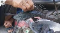 一老人在街上叫卖黑色怪鱼 引群众围观