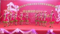 2018上林县明亮镇大同路出阁金花回娘家联谊活动全程纪实