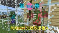 我的世界阿阳历险记184: 阿阳操作失误放出猪人, 结果再次死亡!