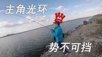 江南路亚钓鱼记 围塘猎鲈 队友 主角光环爆发 势不可挡