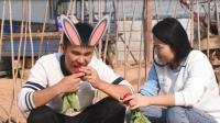 动画片里小兔子吃的萝卜你见过吗? 据说是甜的, 很好吃的!
