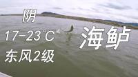 江南路亚钓鱼记 周末 围塘 船钓 碰到鱼群 爆口