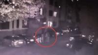 山东理工大学教授遛狗时殴打女学生 被拘留