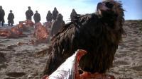 四分钟看完《可可西里》 村民以剥藏羚羊皮为生令人心寒