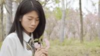 2018 最新歌《  爱的别名是牵挂  》只为情字心中的暖  2018 最新流行 MV