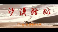 [走一卜03]非常好听的沙漠骆驼 抖音神曲 原版请找展展与罗罗 女版茜茜小公举
