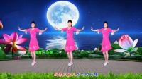 经典金曲广场舞《荷塘月色》附教学, 柔美抒情, 好学好看, 河北青青广场舞