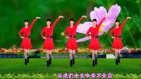 大众健身广场舞《最美的相遇》动感优美, 好听好看, 河北青青广场舞