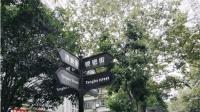 """成都镋钯街入选""""全球最酷50城市街区"""", 超过三里屯, 前法租界!"""