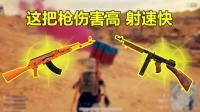 剌激战场: 这把枪有步枪的伤害、冲锋枪射速, 为什么没人用?