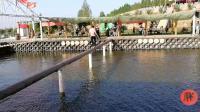 网红桥独木桥视频, 小情侣一前一后过独木桥, 看着真搞笑