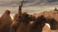 展展与罗罗的《沙漠骆驼》, 旋律轻快, 像骆驼一样坚定洒脱