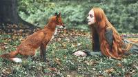 小狐狸七年后再见恩人, 场面一度难以控制, 网友: 妲己转世?