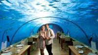 马尔代夫建造水下别墅, 与鲨鱼面对面接触, 网友: 玻璃碎了咋办?