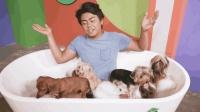戏精小哥挑战和9只狗狗生活24小时, 因为什么刚20分钟就崩溃了?