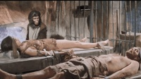 猩猩抓捕人类, 用身体做实验, 手段残忍