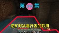 我的世界阿阳历险记213: 有时很鸡肋的冰霜行者, 在矿洞却很方便