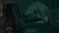 两分钟看完《大海啸之鲨口逃生》澳大利亚海岸的海啸狂潮, 鲨鱼出现袭击游客的惊险