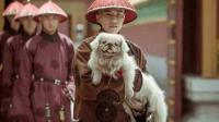 商周时期狗是最低下的象征, 只因一人, 却成为最高等的动物