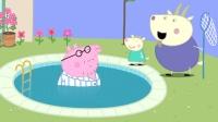 山羊先生发现猪爸爸穿着睡衣就下了泳池, 一旁的小山羊觉得他真搞笑