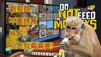 不要喂食猴子! 偷拍的老司机? 被困在大厦的老人|do not feed the monkeys