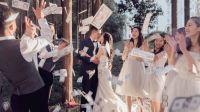 【ColorDream婚礼美学影像】高速开园婚礼快剪