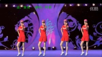 健康一生广场舞 网络神曲《DJ好兄弟一生就一场》原创32步动感步子舞 正面附分解