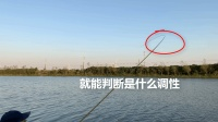 野钓鱼竿的调性判断和选择技巧