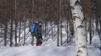 跟老白山原住民一起在林海雪原中玩雪, 比在滑雪场爽多了!