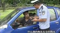交警执法遇到违章车辆, 对话比相声都搞笑, 交警劝说司机狗头不能露出车窗