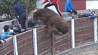 斗牛场斗牛意外发生的瞬间, 公牛简直被气死, 太过分了!