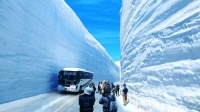 你见过20米厚的雪墙吗? 汽车行驶在公路上, 不怕塌了吗
