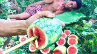 大叔野外榨西瓜汁, 抱着西瓜坐在树上, 潇洒的喝起来