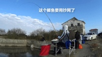 钓鱼实战129, 再探杭州湾湿地, 终得寻觅钓点, 板鲫小爽, 鱼种丰富