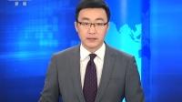 白鹤迁徙途中受伤 警民联手救助 朝闻天下 20181113