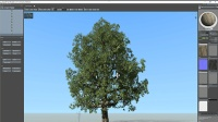 SpeedTree Modeler v8.13 FOR cinema 版本永久使用安装教程(配曲 凉凉)